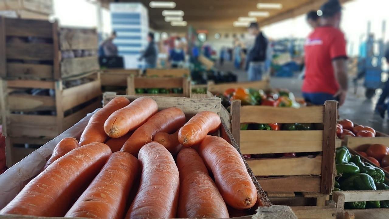Agricultura, setor extrativo, de alimentos e bebidas retomam atividades no PI nesta segunda (13)