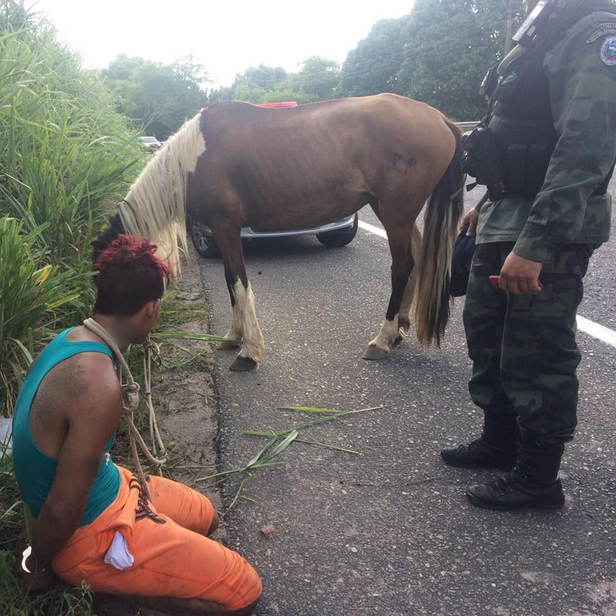 Homem assalta mulheres com chave de fenda e é preso fugindo em cavalo, na PB