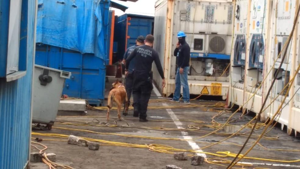 Operação Concórdia, deflagrada nesta terça-feira (12), no RN. — Foto: PF/Divulgação