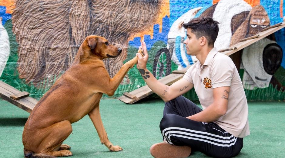 Cleber Santos é adestrador de cães e hoje atende famosos como Alok e Adriane Galisteu (Foto: Divulgação)