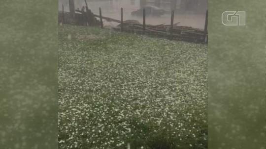 Lagoa Vermelha registra queda de granizo, e casas são danificadas pelo temporal