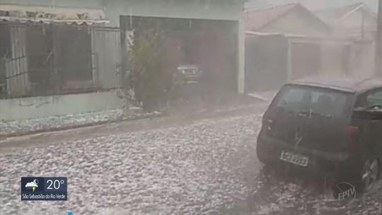 Mulher morre após queda de árvore durante chuva em Santa Rita do Sapucaí, MG