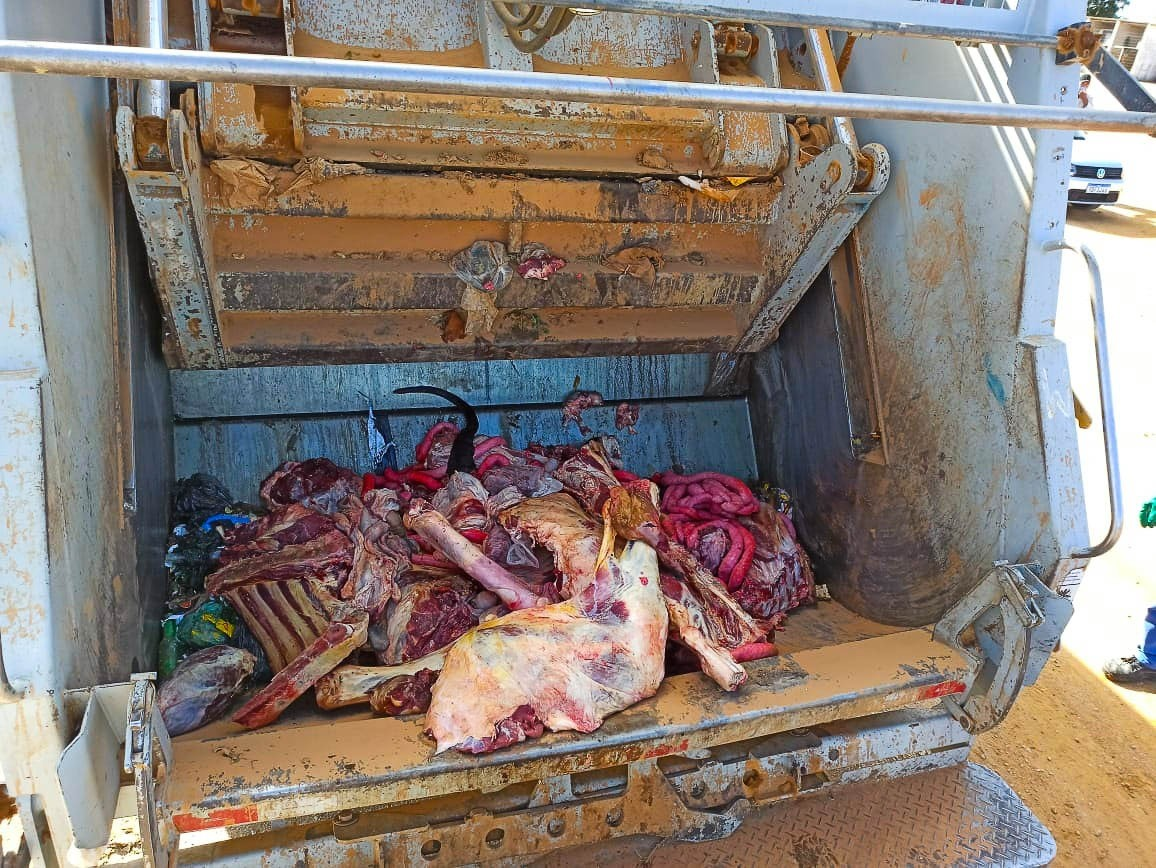 Operação apreende quase uma tonelada de carne de origem clandestina no ES