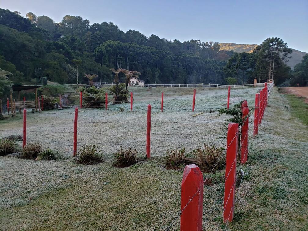 Monte Verde teve geada nesta quinta-feira (2) — Foto: Nelson Pacheco