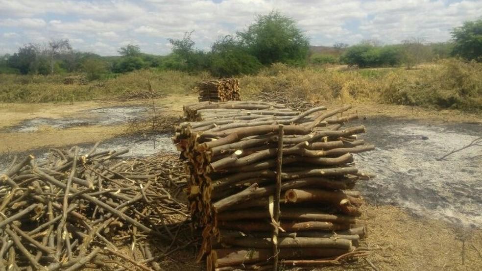 Suspeito de praticar desmatamento é multado em R$5 mil durante fiscalização. (Foto: Carlos Eduardo Costa/ Polícia Militar)