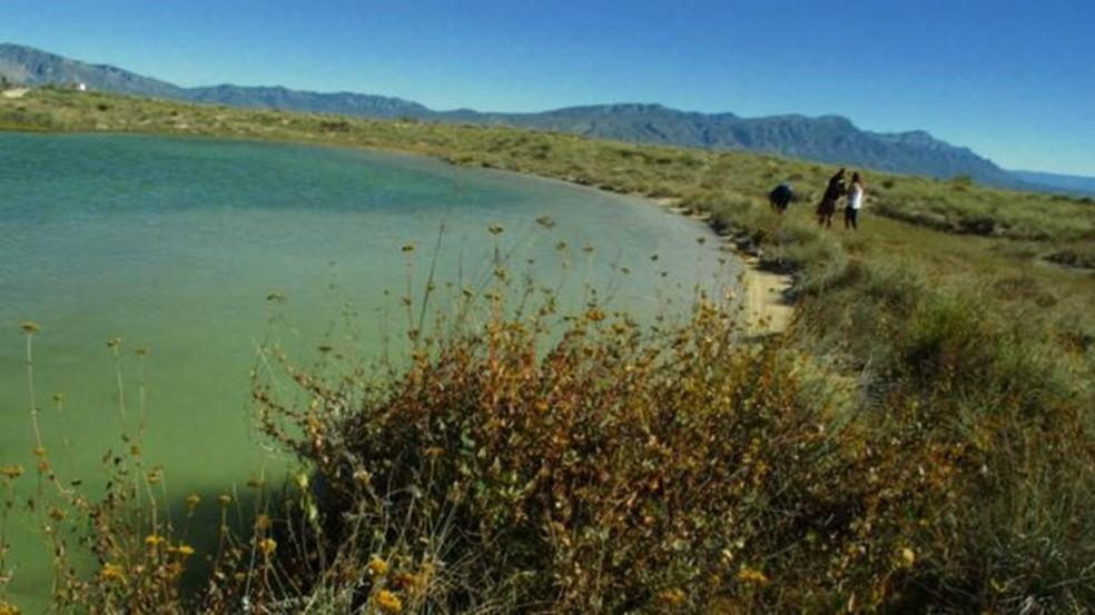 Lagoa de Cuatro Ciénegas corre risco de desaparecer, segundo autoridades — Foto: Daliri Oropeza/Pie de Página/BBC
