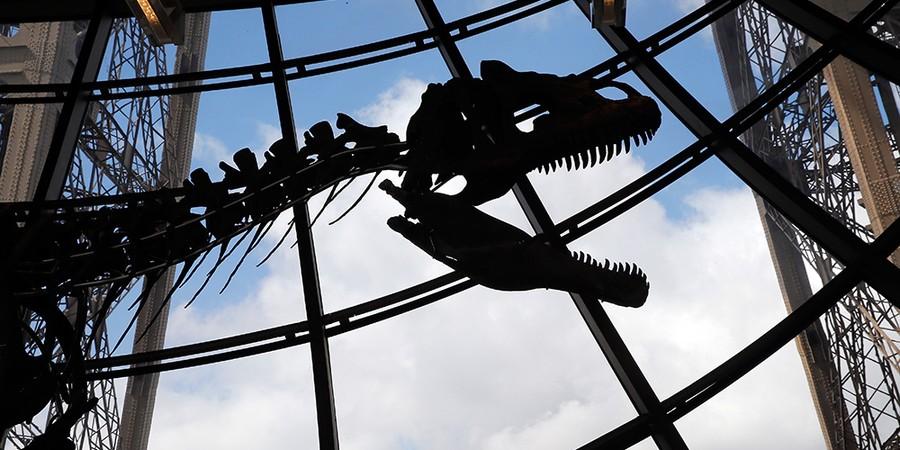 Dinossauro de 9 metros de comprimento e 2,6 metros de altura no primeiro andar da Torre Eiffel, onde foi exibido e leiloado por € 2,01 milhões (Foto: CHESNOT/GETTY IMAGES)