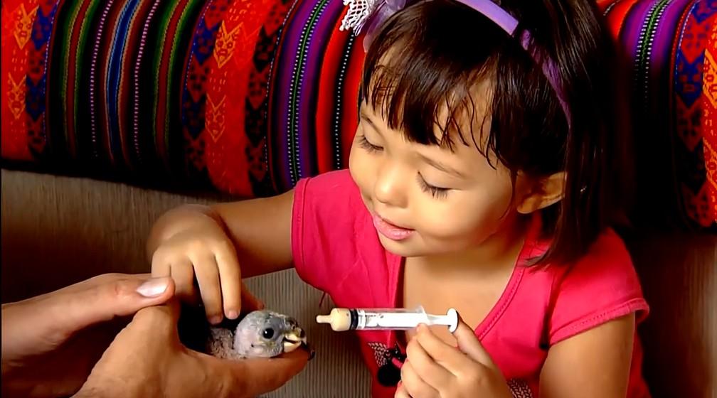 Menina protetora dos animais — Foto: Globo Repórter