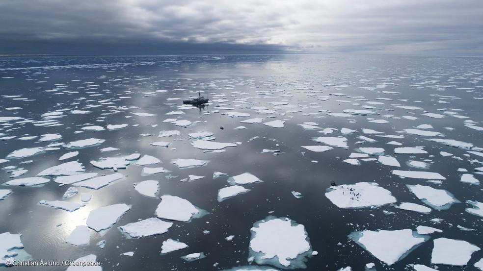 Embarcação navega entre pedaços de degelo no mar do Ártico em 2019 — Foto: Christian Aslund/Greenpeace/Divulgação
