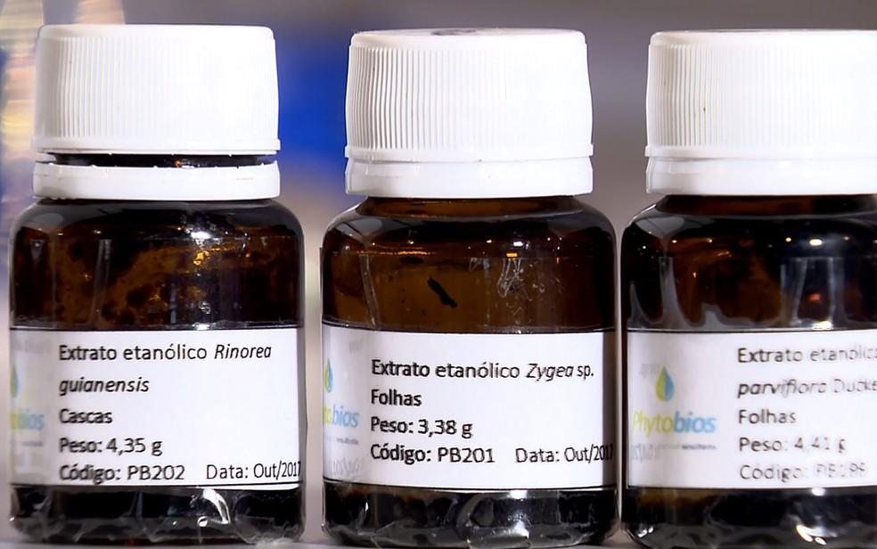 Extratos de plantas brasileiras que estão sendo analisadas no CNPEM, em Campinas (Foto: Reprodução/EPTV)