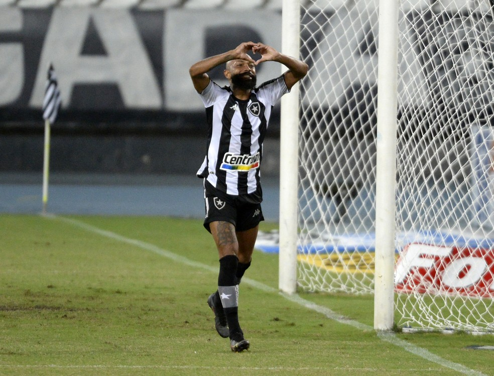 Chegada de novos reforços ajudou Chamusca a melhorar desempenho do Botafogo — Foto: André Durão/ge