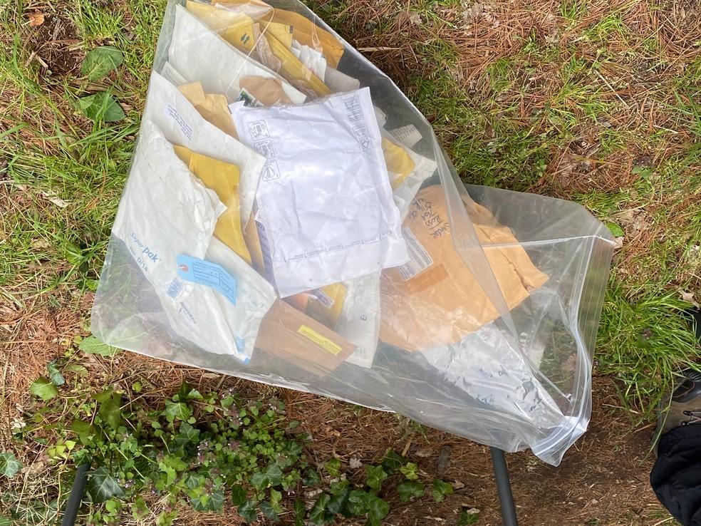 Ovos de animais silvestres eram enviados pelo correio, diz PF — Foto: Polícia Federal/Divulgação