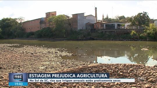 Estiagem preocupa produtores de arroz do Sul de SC