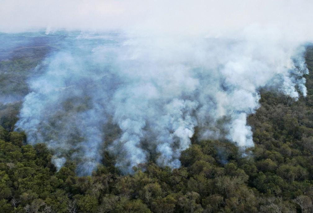 Foto mostra fumaça em meio a vegetação do Pantanal em Poconé, Mato Grosso, no dia 1º de agosto. — Foto: Rogério Florentino/AFP