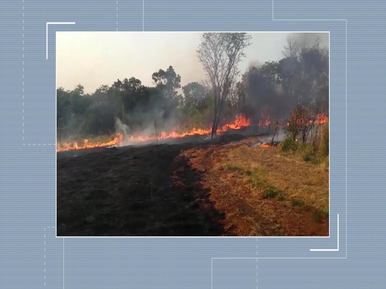 Corpo de Bombeiros de Araxá registra incêndio em cafezal - Notícias - Plantão Diário