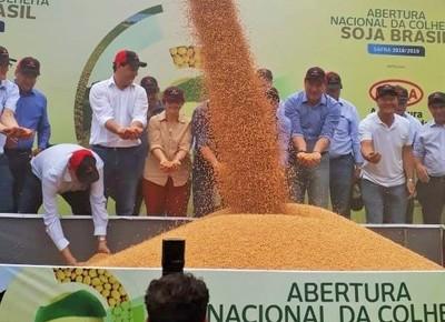 ministra-colheita-soja (Foto: Divulgação/Mapa)