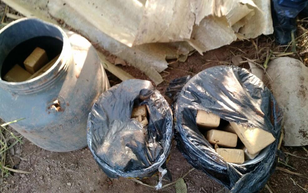 Maconha estava enterrada dentro de baldes e barril em Piracicaba (Foto: Dise)