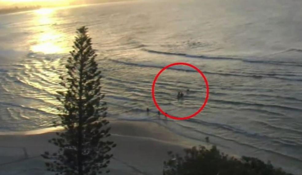 Surfistas retiram do mar vítima de ataque de tubarão na Austrália — Foto: Reprodução/Twitter