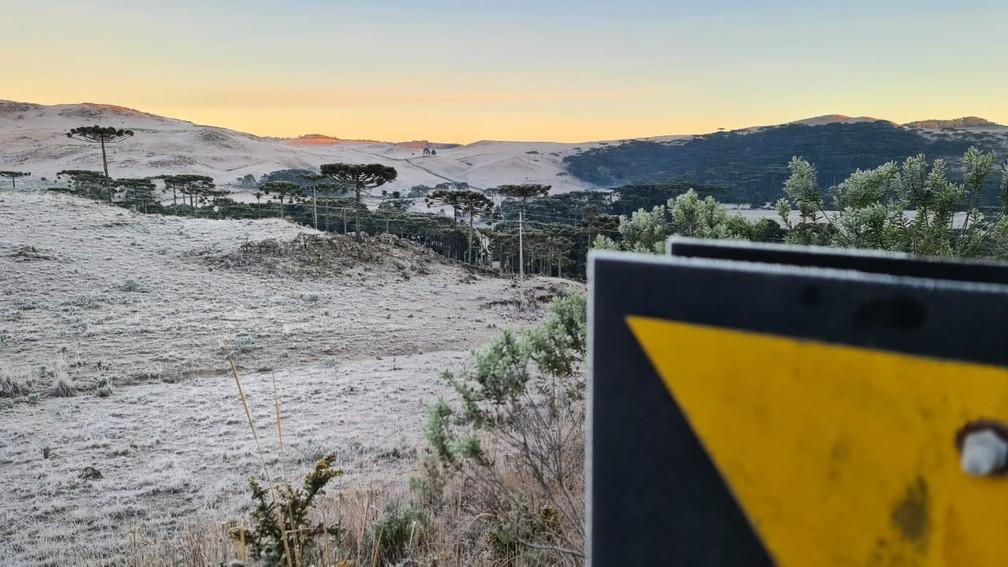 O Vale dos Caminhos da Neve, localizado na cidade de São Joaquim, ficou coberto por gelo nesta terça-feira (20) — Foto: Mycchel Legnaghi/São Joaquim Online