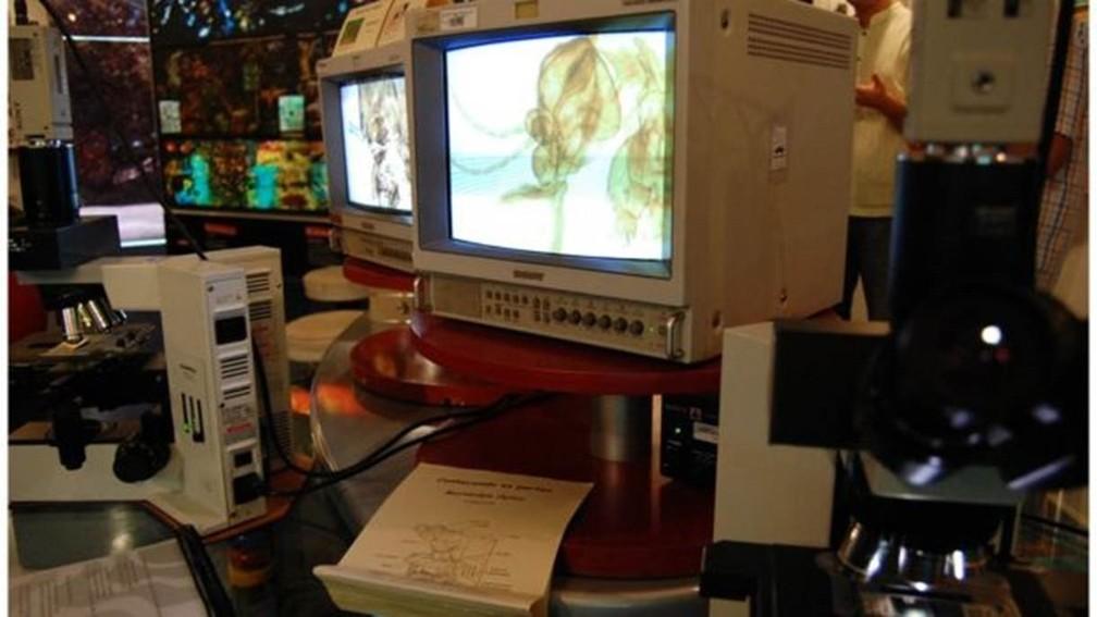 Em alguns hospitais, softwares de diagnóstico por imagem acabam sendo acionados por sistemas como Windows Vista ou XP, para os quais não há mais atualizações e, por isso, são mais vulneráveis a ataques cibernéticos (Foto: Vinícius Marinho/Fiocruz Imagens)