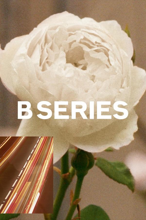 B. Series da Burberry (Foto: Divulgação)