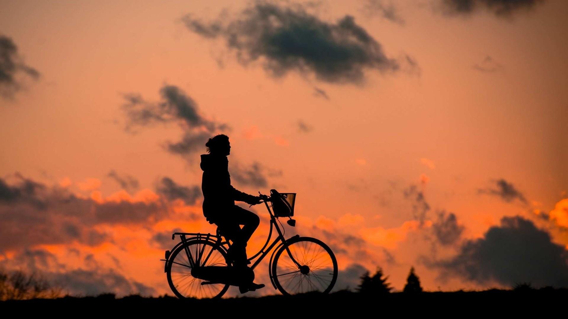 Na Europa é comum o uso da bicicleta como meio de transporte (Foto: Pixabay)