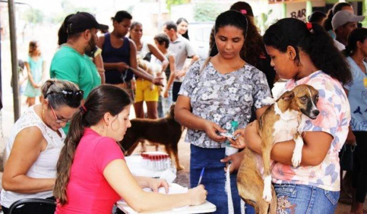 Secretaria Municipal da Saúde realiza ações do combate e prevenção do Calazar em 23 bairros de Fortaleza