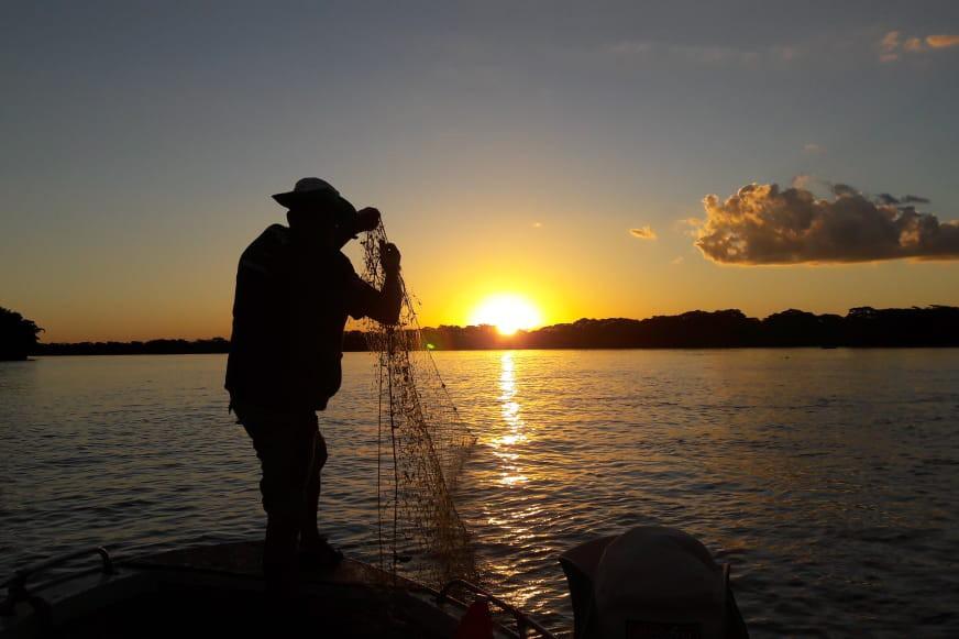 Piracema começa no domingo (1º), e pesca de espécies nativas fica restrita por 4 meses no Paraná