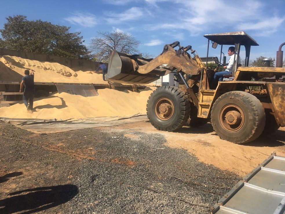 Carga de soja foi retirada do caminhão para a polícia apreender a droga (Foto: Divulgação/Polícia Rodoviária)