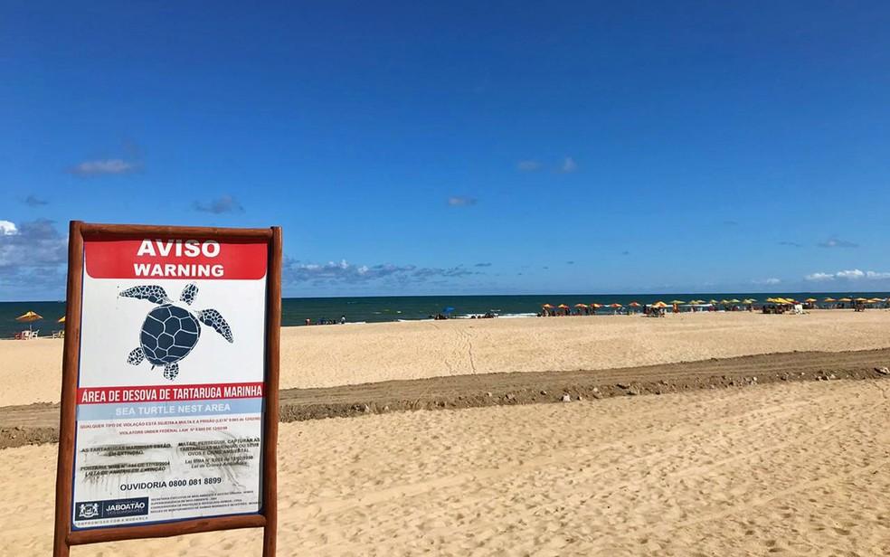 Pista foi aberta em área de desova de tartarugas, em Jaboatão — Foto: Eddie Rodrigues/Reprodução/WhatsApp