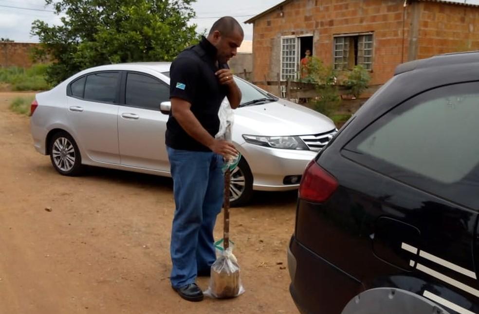 Policial segura bastão que teria sido usado no crime em MS  — Foto: David Melo/Tv Morena
