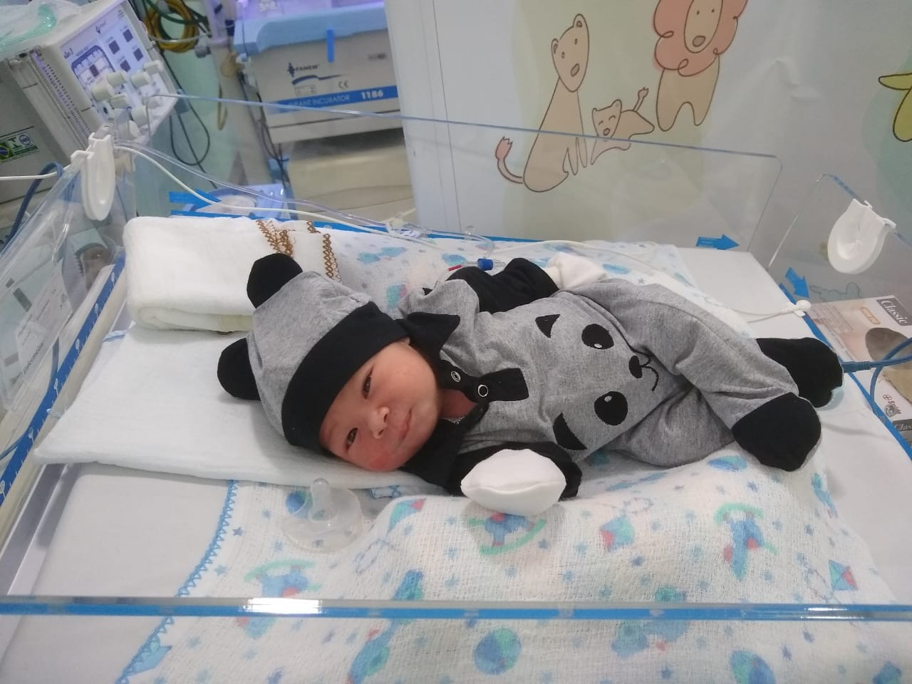 Bebê de grávida que morreu de dengue recebe alta e deixa hospital: 'Milagre da Páscoa', diz pai