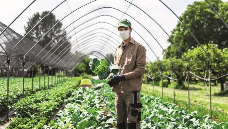Após ano de desafios, por conta da pandemia de Covid-19, agro deve seguir crescendo em 2021 (Foto: Getty Images )