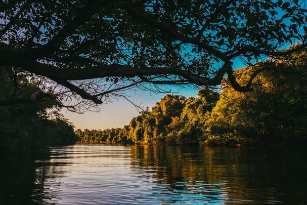 Amazônia (Foto: Luiza Ferraz)