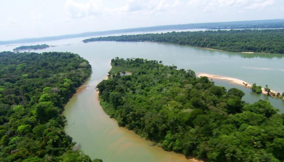 A floresta ocupa uma área de aproximadamente 6,7 milhões de quilômetros quadrados (Foto: Arquivo TG)