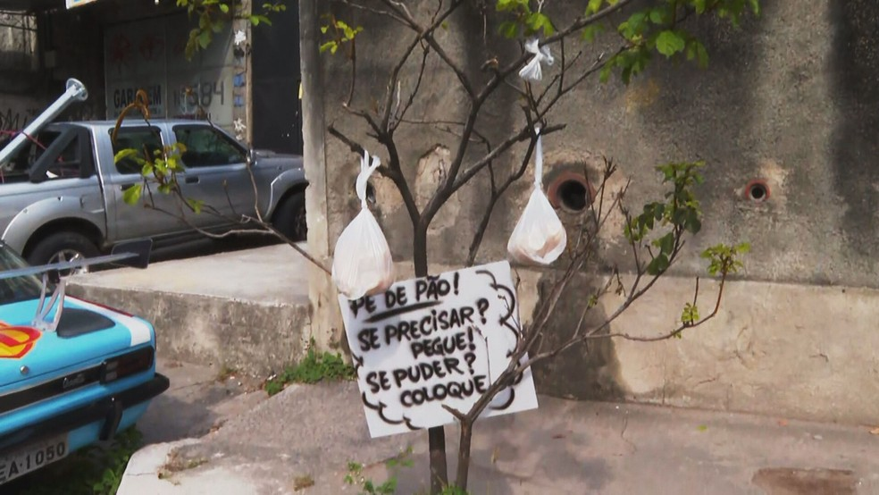 'Pé de pão' em São Gonçalo — Foto: Henrique Lima/TV Globo