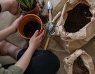 De hobby à terapia, cresce o interesse por jardinagem nos lares