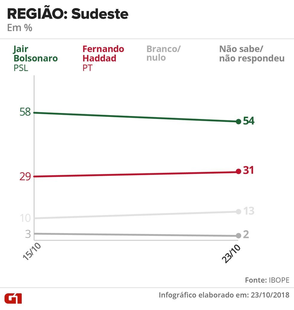 Pesquisa Ibope - 23 de outubro - intenção de voto por segmentos - região: Sudeste — Foto: Arte/G1