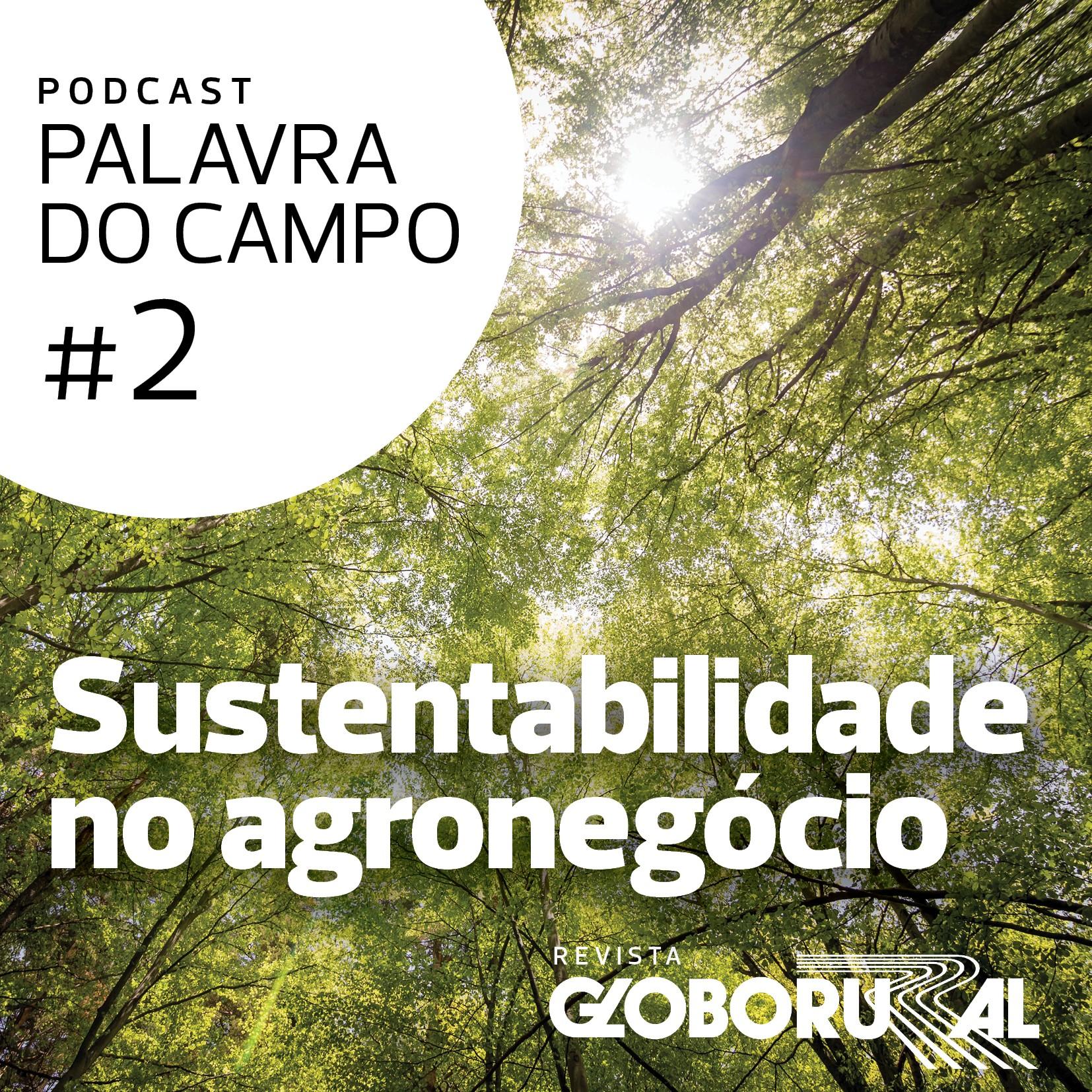 podcast-palavra-campo-sustentabilidade (Foto:  )
