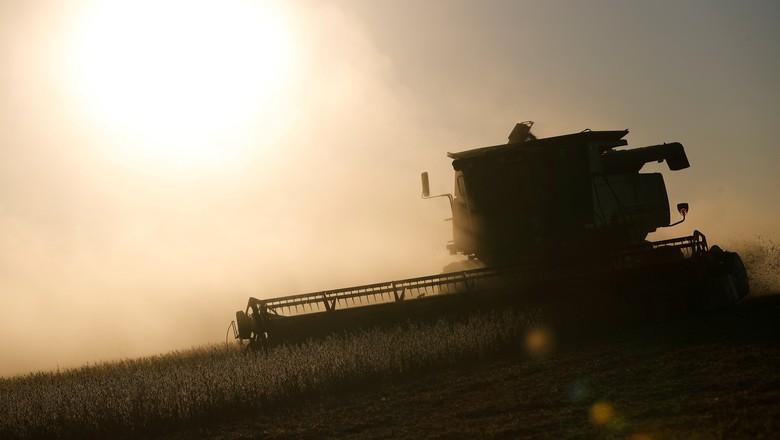 Colheitadeira em plantação de soja mato-grossense (Foto: REUTERS/Agustin Marcarian)