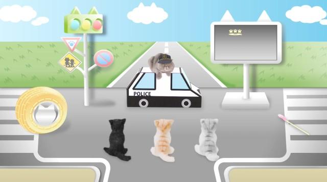 Campanha de trânsito procura conscientizar gatos (Foto: Reprodução)