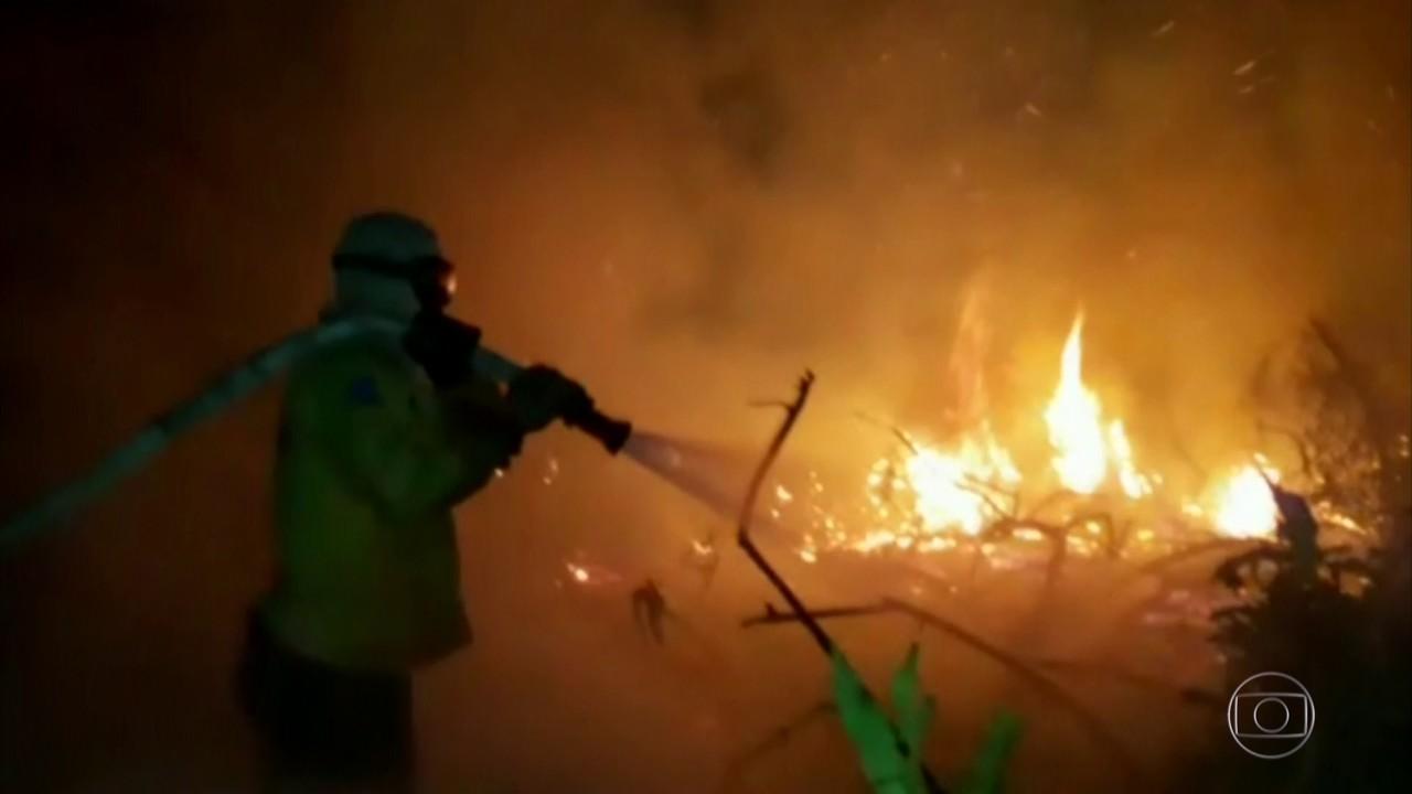 Quarenta agentes da Força Nacional chegam em MT para ajudar no combate às queimadas