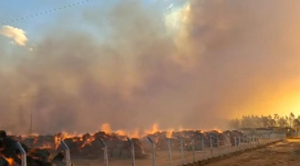 Incêndio atinge depósito de algodão em Luís Eduardo Magalhães — Foto: Reprodução/TV Bahia