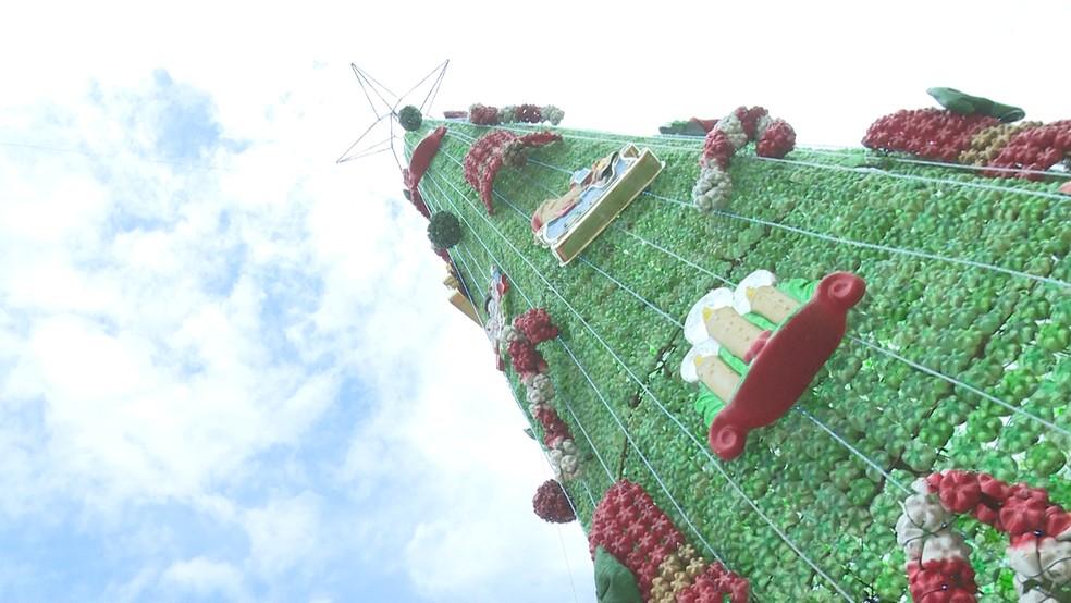 Árvore de Natal e outros enfeites foram montados totalmente de garrafas petis.  — Foto: Reprodução/Rede Amazônica