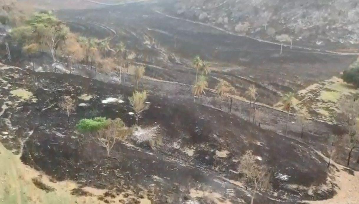 Queimada atinge área de sítios, chácaras e fazendas entre Jaú, Bariri e Bocaina  - Notícias - Plantão Diário
