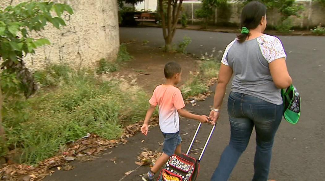 Calçadas cheias de mato e galhos impedem passagem de pedestres em Ribeirão Preto,SP - Noticias