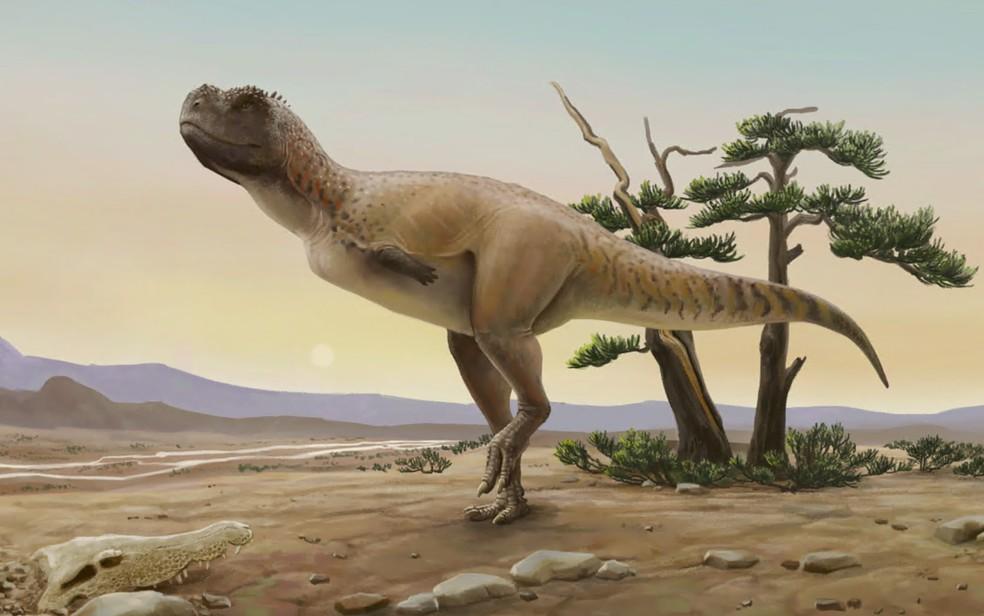 Kurupi itaata pertence à família dos abelissaurídeos e é o primeiro carnívoro encontrado em Monte Alto, SP — Foto: Divulgação/Museu de Paleontologia de Monte Alto