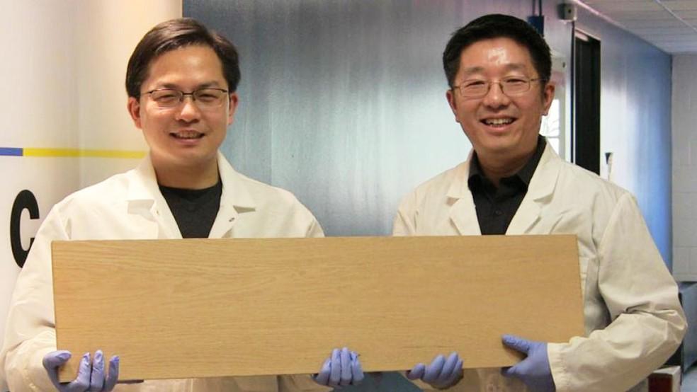 Liangbing Hu e seu colega Teng Li mostrando a supermadeira; pesquisadores a testaram com projéteis semelhantes a balas de revólver (Foto: Universidade de Maryland)