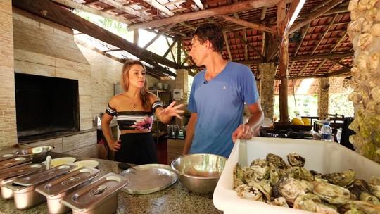 Veja como é o processo feito nas ostras antes de serem consumidas e outras curiosidades