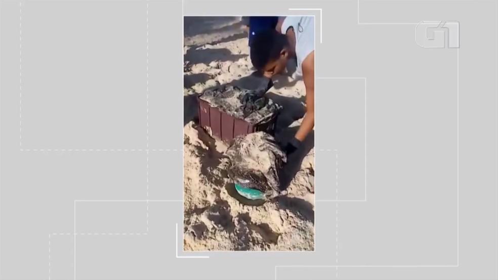 Manchas de óleo chegam a Porto Seguro e atingem praias de Arraial D'Ajuda e Trancoso — Foto: Reprodução/Redes Sociais